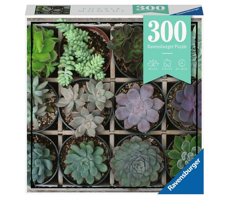 RAVENSBURGER PUZZLE GREEN MOMENT 300 PZ